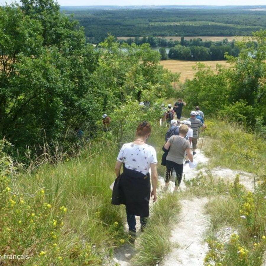 Randonnée dans le Parc Naturel Régional du Vexin Français